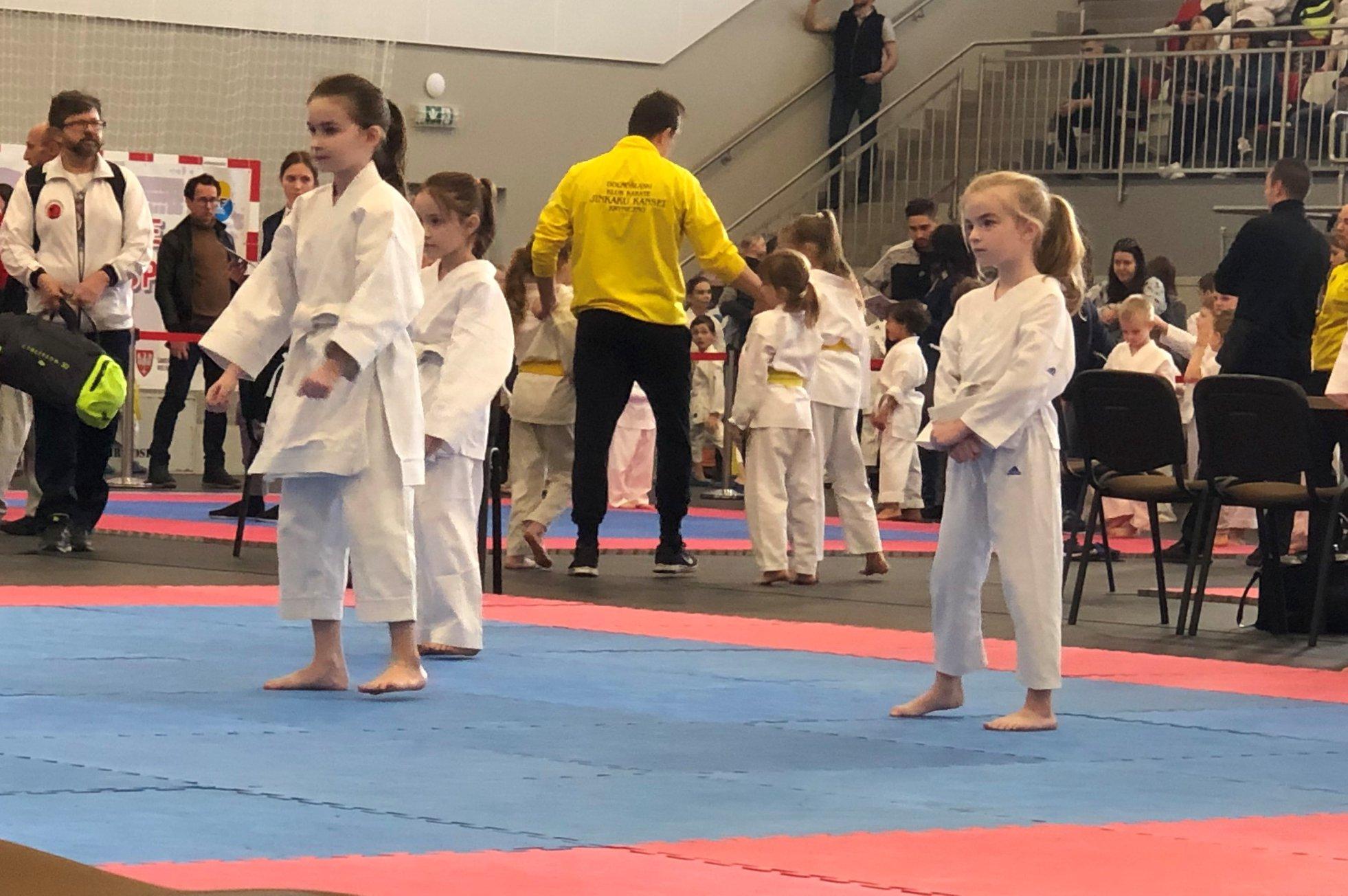 Mistrzostwa Wielkopolski w Karate WKF – Mosina 2019